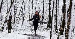 © Licensed to London News Pictures. 27/12/2017. Oakhill, UK. Mia Hiscox aged 19 runs through the snow covered ancient Beacon Hill Woods near Oakhill on the Mendip Hills. Photo credit: Jason Bryant/LNP