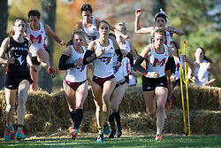 (Ottawa, Canada---13 October 2018) Athletes racing in the 2018 Jim Howe Memorial XC Challenge at Mooney's Bay Park in Ottawa, Canada.