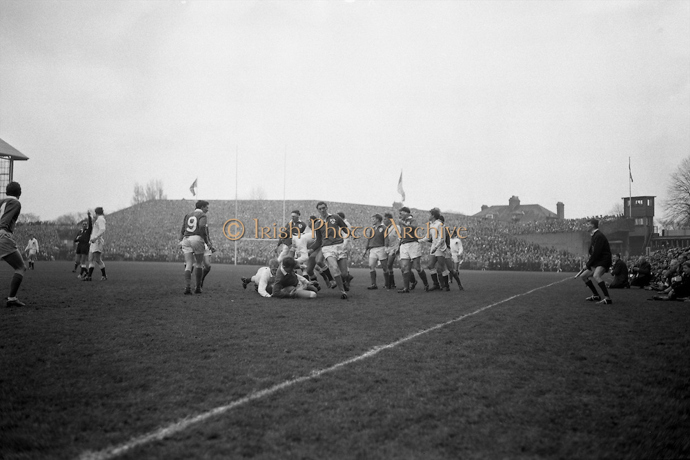 A flying tackle, English full back RW Hosen crashes to the ground, brought down by Ireland's right centre Bresnihan, with the pack following up, ..Irish Rugby Football Union, Ireland v England, Five Nations, Landsdowne Road, Dublin, Ireland, Saturday 11th February, 1967,.11.2.1967, 2.11.1967,..Referee- D M Hughes, Welsh Rugby Union, ..Score- Ireland 3 - 8 England, ..Irish Team, ..T J Kiernan,  Wearing number 15 Irish jersey, Full Back, Cork Constitution Rugby Football Club, Cork, Ireland,..D Scott, Wearing number 14 Irish jersey, Right Wing, Queens University Rugby Football Club, Belfast, Northern Ireland, ..F P K Bresnihan, Wearing number 13 Irish jersey, Right Centre, University College Dublin Rugby Football Club, Dublin, Ireland, ..J C Walsh,  Wearing number 12 Irish jersey, Left Centre, Sundays Well Rugby Football Club, Cork, Ireland, ..N H Brophy, Wearing number 11 Irish jersey, Left wing, Blackrock College Rugby Football Club, Dublin, Ireland, ..C M H Gibson, Wearing number 10 Irish jersey, Stand Off, N.I.F.C, Rugby Football Club, Belfast, Northern Ireland, ..B F Sherry, Wearing number 9 Irish jersey, Scrum Half, Terenure Rugby Football Club, Dublin, Ireland, ..K G Goodall, Wearing number 8 Irish jersey, Forward, Newcastle University Rugby Football Club, Newcastle, England, ..M G Doyle, Wearing number 7 Irish jersey, Forward, Edinburgh Wanderers Rugby Football Club, Edinburgh, Scotland, ..N Murphy, Wearing number 6 Irish jersey, Captain of the Irish team, Forward, Cork Constitution Rugby Football Club, Cork, Ireland,..M G Molloy, Wearing number 5 Irish jersey, Forward, University College Galway Rugby Football Club, Galway, Ireland,  ..W J McBride, Wearing number 4 Irish jersey, Forward, Ballymena Rugby Football Club, Antrim, Northern Ireland,..P O'Callaghan, Wearing number 3 Irish jersey, Forward, Dolphin Rugby Football Club, Cork, Ireland, ..K W Kennedy, Wearing number 2 Irish jersey, Forward, C I Y M S Rugby Football Club, Belfast, Northern Ireland, ..T A Mo