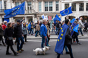 The EU flag flying in all shapes and forms at the Put It To The People march for a Peoples Vote on 23rd March 2019 in London, United Kingdom. With less than one week until the UK is supposed to be leaving the European Union, the final result still hangs in the balance and protesters gathered in their hundreds of thousands to make political leaders take notice and to give the British public a vote on the final Brexit deal. (photo by Andrew Aitchison / In Pictures via Getty Images)
