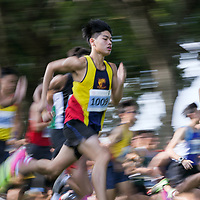 2017 National Schools Boys Cross Country Championships