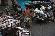 Wholesale fish market is most active at dawn, Hogg Market, near Esplanade, Calcutta, West Bengal, India