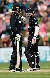 New Zealand's Kane Williamson, right, and Martin Guptill discuss options against Pakistan in the third one day cricket international at the University of Otago Oval, Dunedin, New Zealand, Saturday, January 13, 2018. Credit:SNPA / Adam Binns ** NO ARCHIVING**