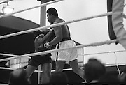Ali vs Lewis Fight, Croke Park,Dublin..1972..19.07.1972..07.19.1972..19th July 1972..As part of his built up for a World Championship attempt against the current champion, 'Smokin' Joe Frazier,Muhammad Ali fought Al 'Blue' Lewis at Croke Park,Dublin,Ireland. Muhammad Ali won the fight with a TKO when the fight was stopped in the eleventh round...Near the end of the bout Ali is pictured in complete control.