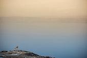 JORDAN-Dead Sea