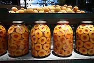 Venta de melocotones en el Junquito. 31-08-2008 (ivan gonzalez)