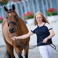 First Horse Inspection - CCI4* - 2017 Luhmuhlen