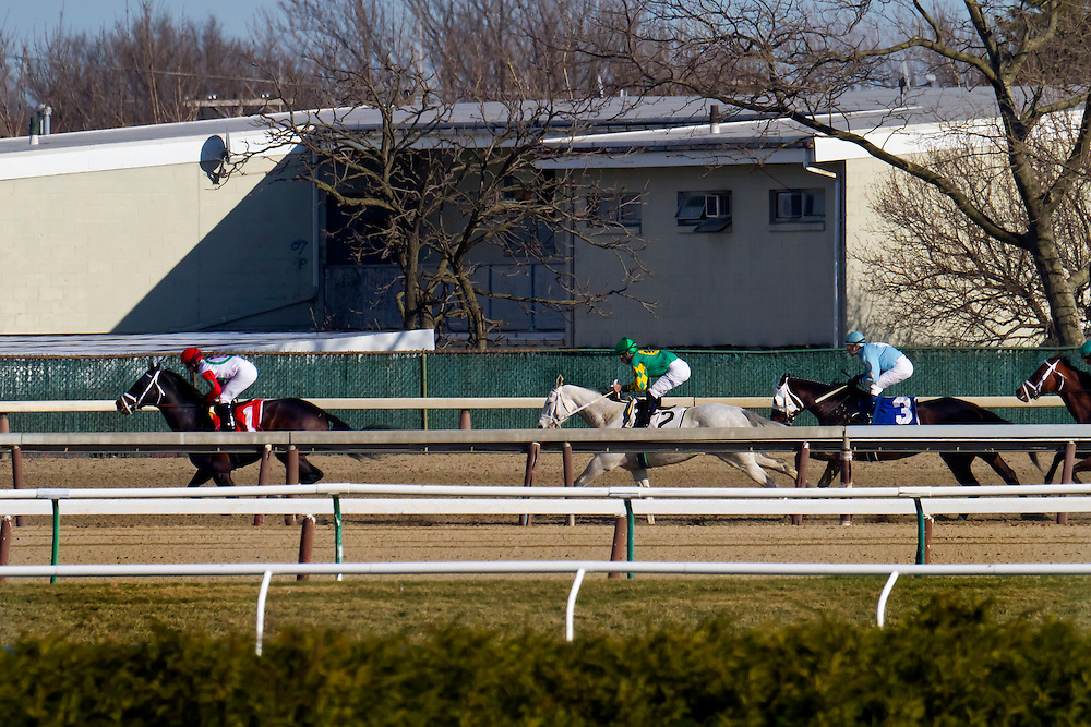 "Down the back stretch. The grey horse, ""Inherit the Gold,"" who was the easy winner, is laying second here. His jockey was Eddie Castro."
