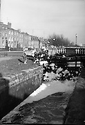 fome on canal dublin not captioned as should any help welcome