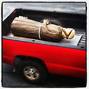 Carved statue of St. Francis of Assisi rests in the bed of a truck. (Sam Lucero photo)