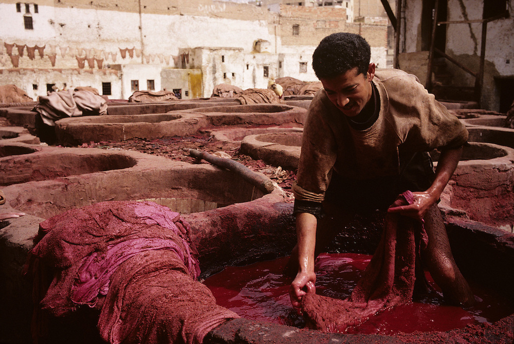 Africa, Morocco, Worker colors cow hides in ancient die pits at leather tannery in city of Fez.