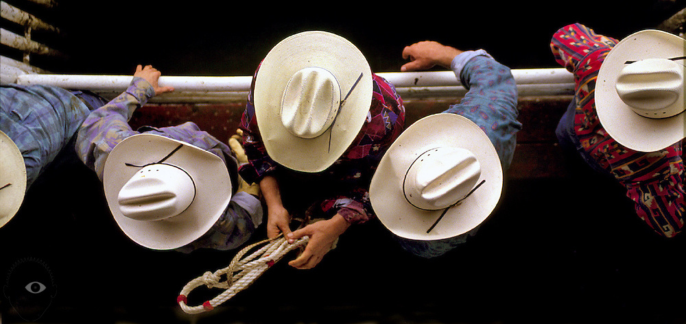 Bull riders watch and await their turns in the ring during the St. paul Rodeo event.