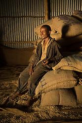 Tilahun Makonen loads cofee on trucks on the Teppi plantation in the Kaffa region of Ethiopia.