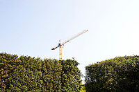 Crane appearing over Green hedges