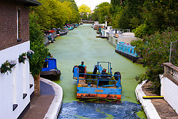 According to the Met Office, August 31st marks the last day of summer and there certainly is a bit of a nip in the air around Little Venice in London as machines fight a losing battle against the bloom of duckweed infesting the Regents and Grand Union canals. London, August 31 2018.