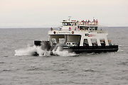 Ferry boat traffic between the tip of the Door County Wisconsin peninsula and Washington Island.  (Mike Roemer Photo)