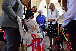 Clare Guest (2nd left) founder of Medical Detection Dogs speaks to Queen Elizabeth II and the Duchess of Cornwall during the 10th anniversary celebration of the charity at the Royal Mews in London.