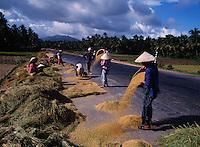 Drying rice on highway No. 1, Vietnam