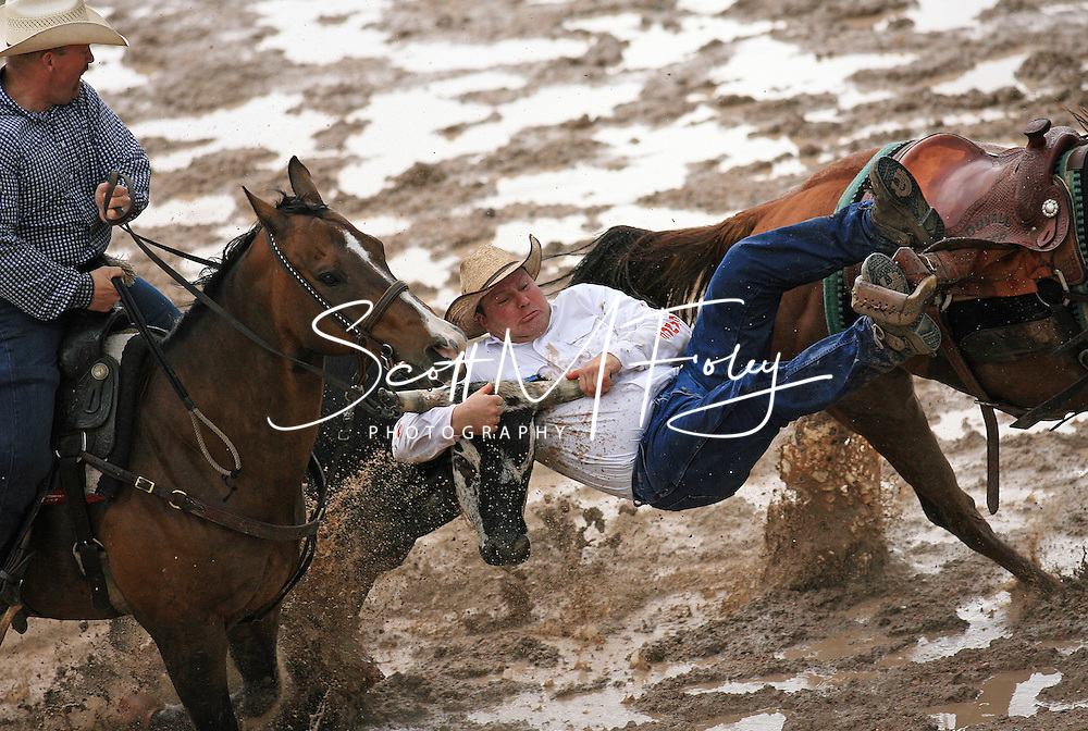 Bull Dogger Kelly Masters pins his steer with a penalty resulting in a 19.8 sec time, 28 July 2007, Cheyenne Frontier Days