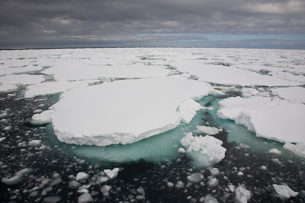 February 19th 2007. Ross Sea. Southern Ocean. At the edge of the sea ice in the Ross Sea.