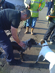LIVERPOOL, ENGLAND - Tuesday, February 19, 2008: Dog owner Mike is re-united with Louis, his pet Springer Spaniel, after being rescued from the frozen Sefton Park Boating Lake. (Pic by David Rawcliffe/Propaganda)