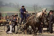 Poland. Bodzentyn. peasant farmers Market.  free market   /  marche libre des chevaux,   Bodzentyn  Pologne