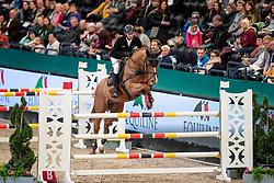 Kutscher Marco, GER, Policeman<br /> Leipzig - Partner Pferd 2019<br /> © Hippo Foto - Stefan Lafrentz