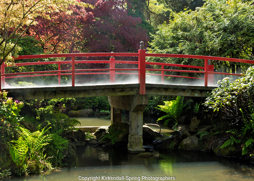 WA10285-00...WASHINGTON - Heart Bridge, after a rain storm, in Kubota Garden, a Seattle City Park .