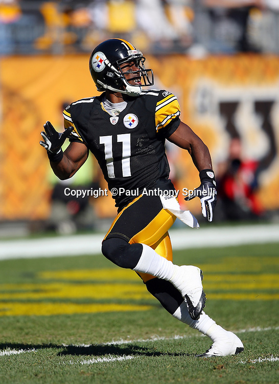 Pittsburgh Steelers kick returner Stefan Logan (11) looks up as he fields a kickoff during the NFL football game against the Minnesota Vikings, October 25, 2009 in Pittsburgh, Pennsylvania. The Steelers won the game 27-17. (©Paul Anthony Spinelli)