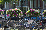 Bicycles parked and chained for security on bridge in Amsterdam, Holland