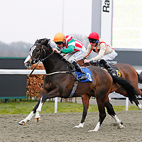 Tiday Affair and Shane Kelly winning the 2.20 race