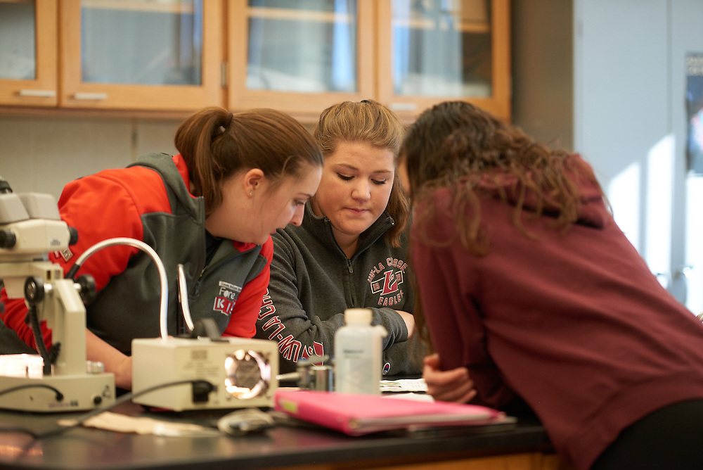 Activity; Lab; Buildings; Cowley; Fall; November; Location; Inside; Classroom; Objects; Microscope; People; Student Students; Type of Photography; Candid; UWL UW-L UW-La Crosse University of Wisconsin-La Crosse