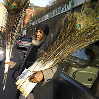 Street vendor selling peacock feathers, Brick Lane, London