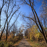 Picture of Old Plank Road Trail in Frankfort Illinois.  Frankfort is a Southwest Chicago suburb. The Old Plank Road Trail is a 22 mile long public path and former railroad track train route that runs through Frankfort.