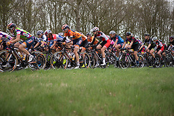 The peloton rides together in the first lap of Stage 3 of the Healthy Ageing Tour - a 154.4 km road race, between  Musselkanaal and Stadskanaal on April 7, 2017, in Groeningen, Netherlands.