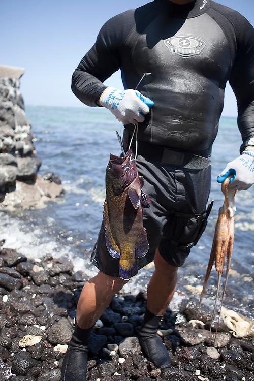 Kawika Auld with catch, roi, octopus, access 56, Lalamilo ahupuaa, South Kohala, Big Island, Hawaii