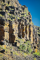 Ancient basalt columns are a typical sight in Central Washington. They are formed by cooling lava, forming cracks that create these columns by contracting. The faster the lava cools, the thinner the columns. These thick columns cooled gradually over some time. The presence of the lichens that now cover the stony face is an indicator of very good air quality and a lack of pollution.