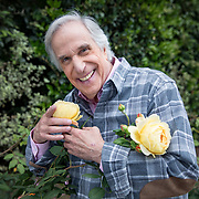 Portrait and photographs of actor and author Henry Winkler at his home in Brentwood, California where he often tends to his own roses in his garden.