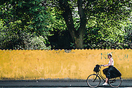 A cyclist in Copenhagen cycles past the bright yellow wall surrounding Assistens Kirkegård in the Nørrebro district of the Danish capital city