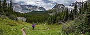 Hiking below Beatty Glacier, east of North Kananaskis Pass in Peter Lougheed Provincial Park, Kananaskis Country, Alberta, Canada. This image was stitched from multiple overlapping photos.