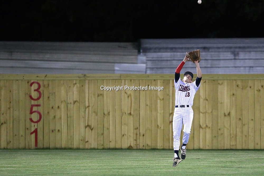 Nettleton's Cameron Cruber reaches for a catch in the outfield during Friday night's playoff game against Mooreville.
