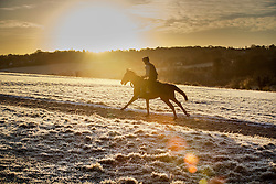 © Licensed to London News Pictures. 03/01/2017. Epsom, UK. A race horse is exercised on a frost covered Epsom Downs. Parts of the UK are experiencing temperatures as low as -5 degrees centigrade. Photo credit: Peter Macdiarmid/LNP
