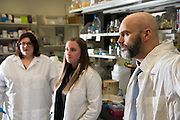 Ronan Carroll (Right), Assistant Professor in the department of Biological Sciences, works with students in his lab in the Life Sciences Building on the Athens campus. © Ohio University/ Photo by Ben Siegel