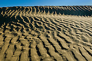 Ripples and sand dunes <br /> Great Sand Hills<br /> Saskatchewan<br /> Canada