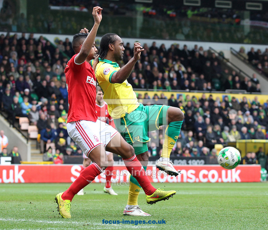 Michael Mancienne of Nottingham Forest and Cameron Jerome of Norwich in action during the Sky Bet Championship match at Carrow Road, Norwich<br /> Picture by Paul Chesterton/Focus Images Ltd +44 7904 640267<br /> 21/03/2015