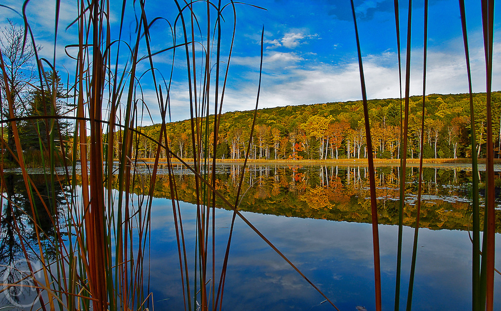 Fall colors at Fountain Pond in Great Barrington, Massachusetts.