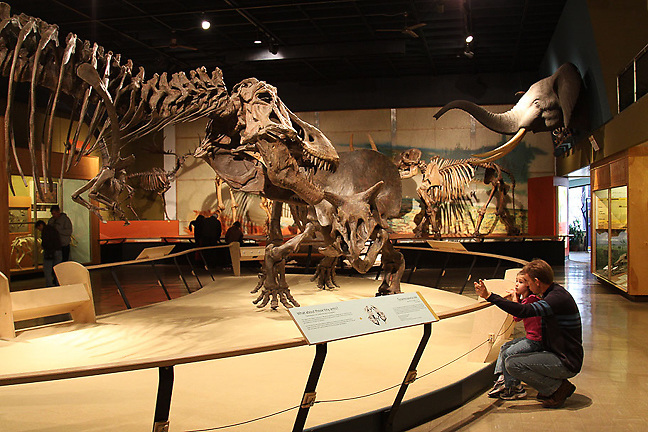 Natural History Musuem in Cleveland, Ohio