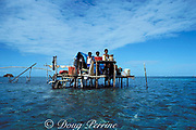 temporary fishing camp on Belize barrier reef, Caye Glory<br /> ( Emily ), 1988, inhabited seasonally during grouper <br /> spawning aggregation, fishermen lived here with families for<br /> weeks to month, Belize, Central America ( Caribbean Sea )