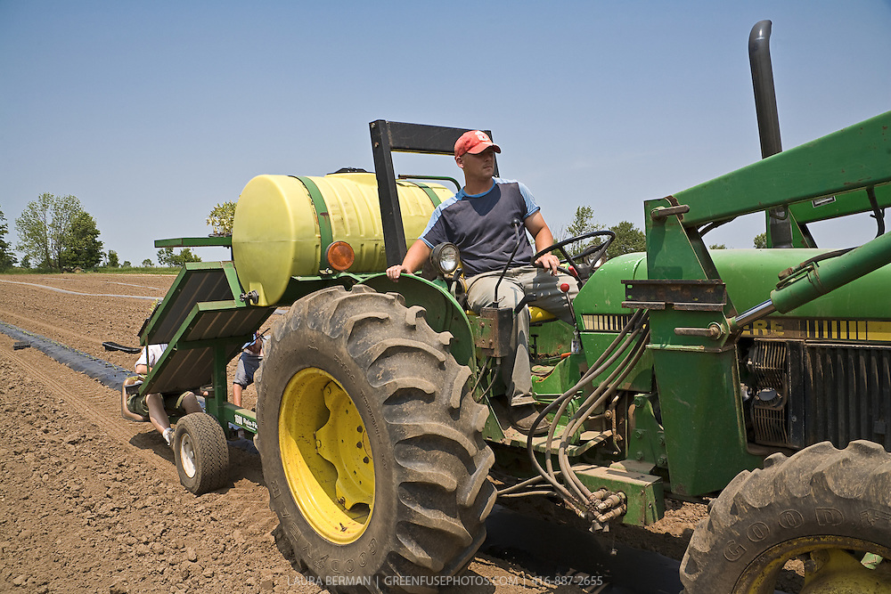 Stock photo of a farmer driving a green tractor that is pulling a transplanter unit with a yellow water tank, under a clear blue sky.