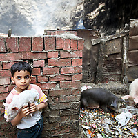 "A young boy holds a piglet at the home of a zabaleen. To Abraham Fahmi, a local Coptic priest, it comes down to a simple matter. ""If you move the garbage, you will kill the entire neighborhood,"" he said. ""This is their lives."" May 2009."